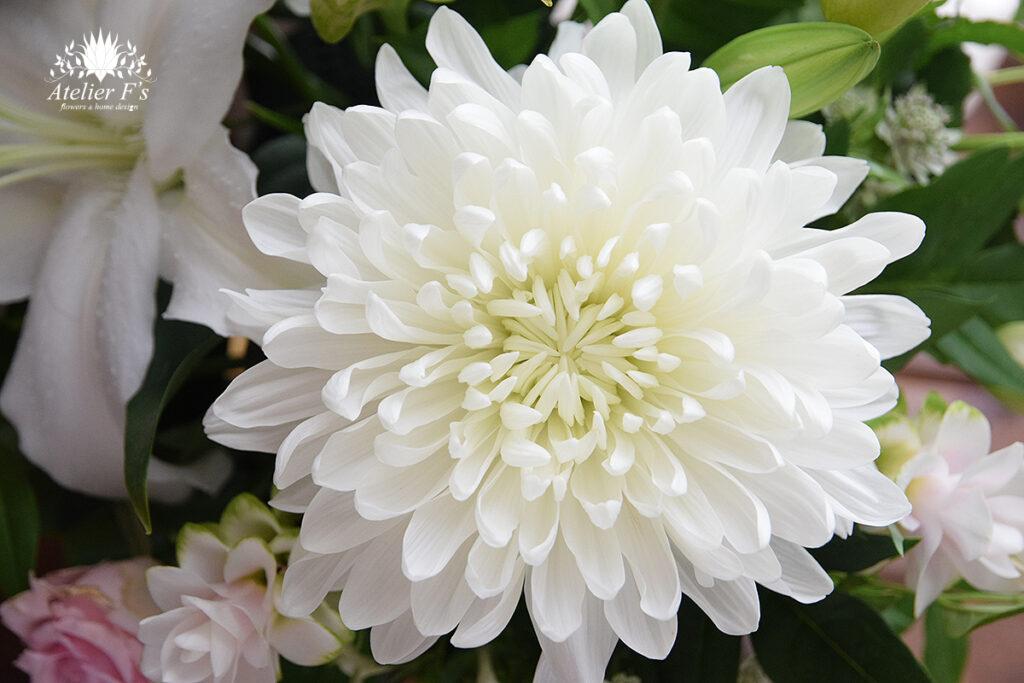 お盆のお供えに向く花