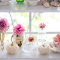 ガーベラの切り花を長く持たせる方法