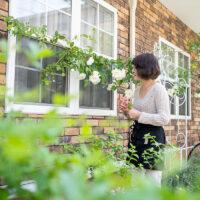 小さな庭のガーデニング