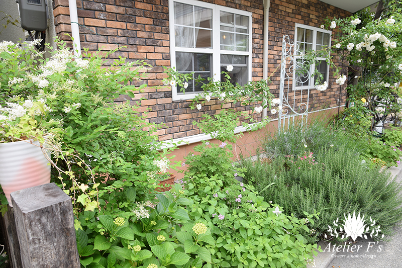 アトリエフィーズ 5月に庭